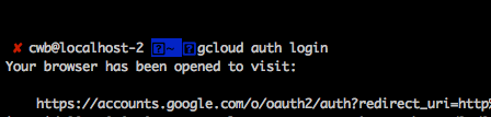 Google Cloud authentication