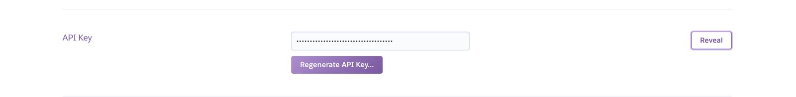 API Key section