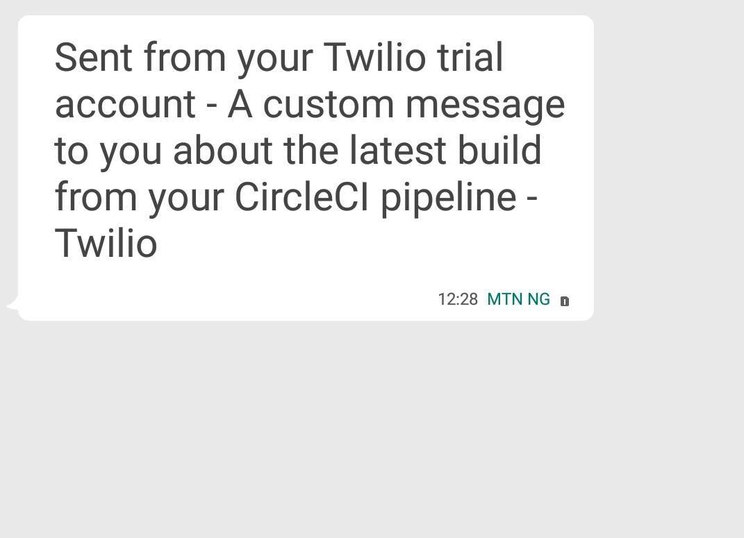 Twilio custom message